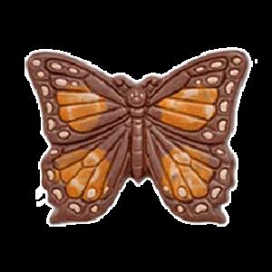 vlinders-van-chocola