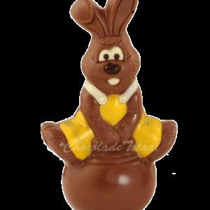 skippyball-paashaas-chocola